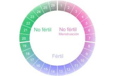 Metodo Del Calendario.Metodo Del Ritmo Metodo Anticonceptivo Del Ritmo